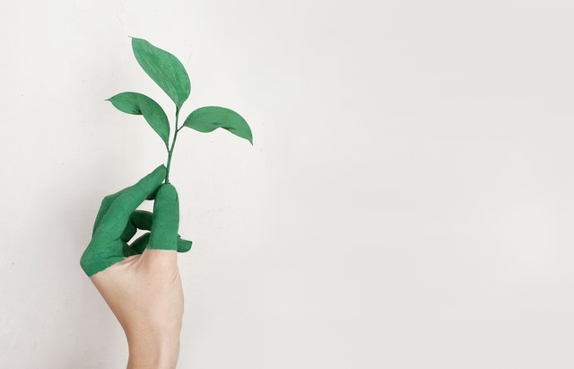 go-green-print-solutions-west-palm-beach